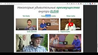 Bepic Личный Сайт на Английском Языке Каждому Партнёру Бесплатно Обучение Elev8 Acceler8