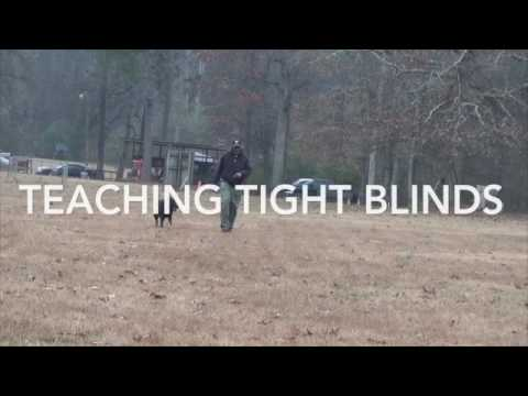 Portable Blind Search