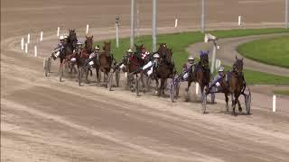 Vidéo de la course PMU PRIX YEARLINGSALE.NL - 21 SEPT.