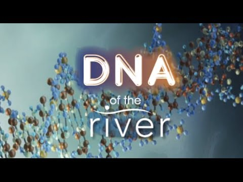 "DNA of The River - Leaving The Vineyard: Going ""Off Road"""