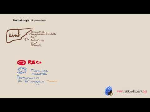 Hematology Lecture 1 of 4 PANCE / PANRE