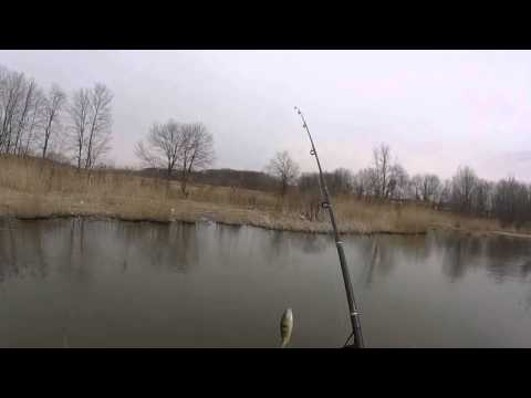 early-spring-lake-fishing-for-perch