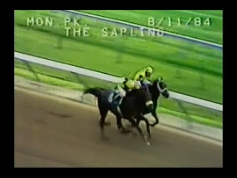 1984 Sapling Stakes