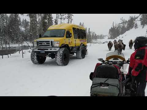 Yellowstone Snowmobile Trip 2018