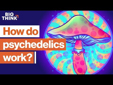The science of psilocybin and its use to relieve suffering