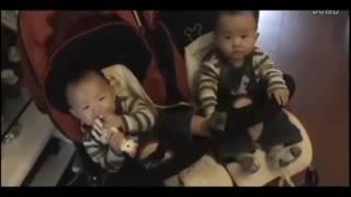 Download video kejadian lucu bayi ngakak www stafaband co