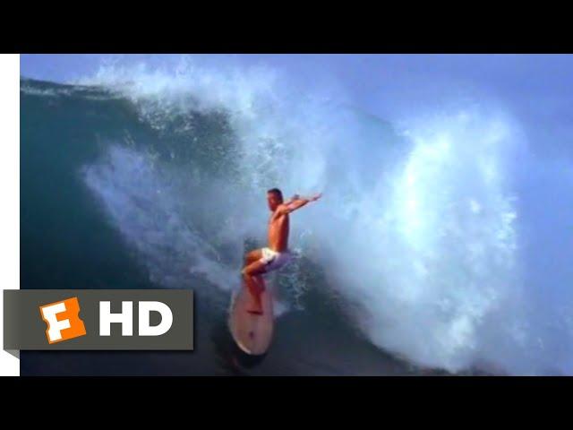 Big Wednesday (1978) - Matt's Big Wave Scene (9/10) | Movieclips