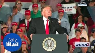 Trump comments on Pete Buttigieg's appearance on Fox News