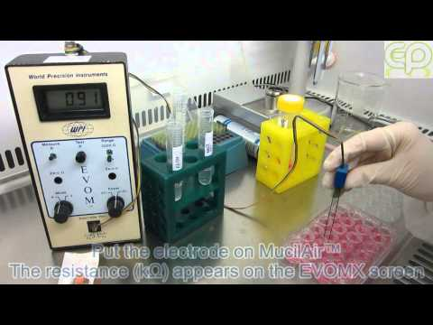 """Protocol """"TEER (Trans Epithelial Electrical Resistance) measurement"""" HD 720p - Epithelix"""