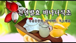 바나나식초,  천연발효 식초 만들기 (다이어트, 성인병…