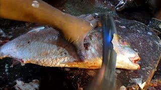 Fast Fish Cutter | How To Cut A Koral Fish Fast