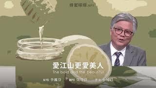 1小時hr循環【蜂蜜檸檬.mp3】愛江山更愛美人 Cover by 吳萼洋 (伴奏 小尾巴)
