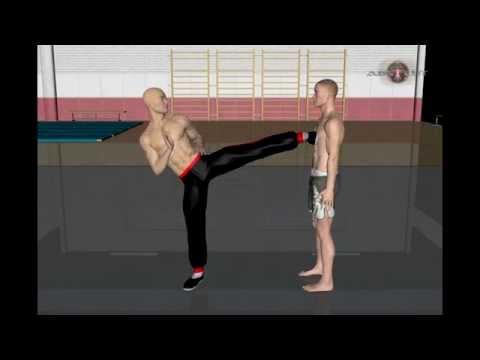 Каратэ для начинающих, тренировки, упражнения. Видео