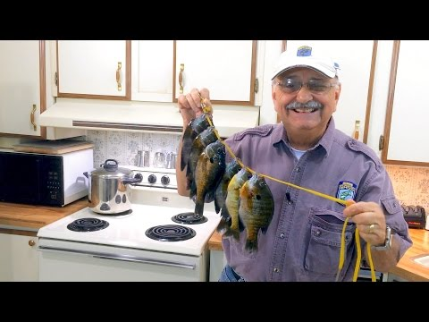 Catching & Cooking Bluegill (the low-carb Greek way)