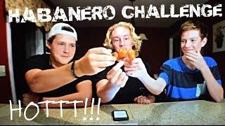 habanero pepper challenge must see