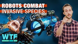 Robots are fighting invasive species (What The Future)