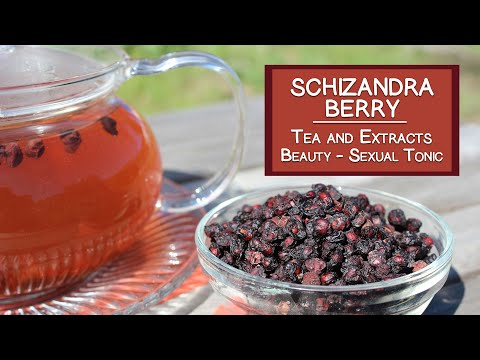 Schizandra Berry Tea and Extracts, Renowned Beauty Herb and