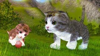 СИМУЛЯТОР Маленького КОТЕНКА #8 Беременная кошка родила котика - развлекательное видео #пурумчата