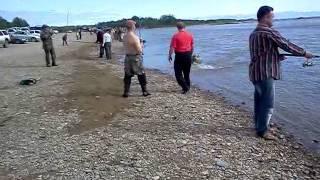 Рыбалка Магадан .3gp(Видео для поста в жж: http://alembayev.livejournal.com/tag/%D0%A0%D1%8B%D0%B1%D0%B0., 2011-07-19T02:36:04.000Z)