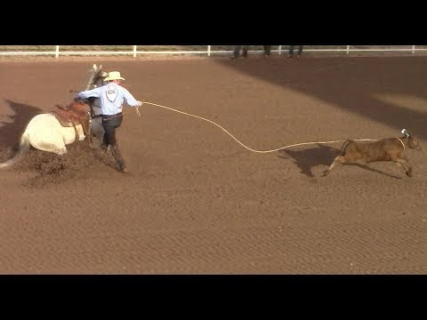 Calf Roping - Cheyenne Rodeo - July 20, 2017 - 2nd Go Round - Part 1