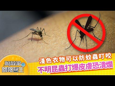 淺色衣物可以防蚊蟲叮咬 不明昆蟲打爆皮膚恐潰爛 | 脫殼吧帥哥醫生 EP64 精華版