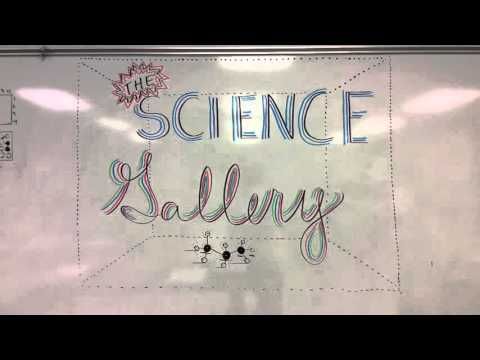 St Patrick Cathedral School El Paso TX Science Projects