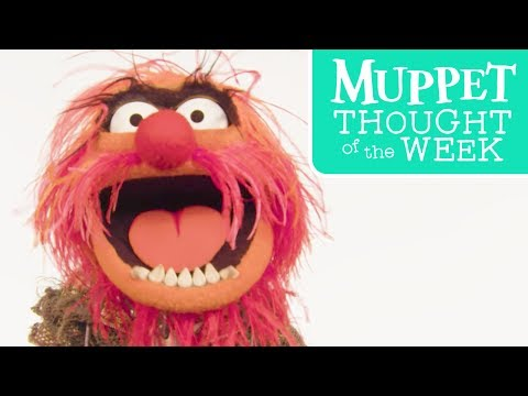 Muppet Thought of the Week ft. Animal | The Muppets