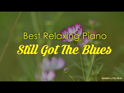 Still got the blues 🌺 Best relaxing piano, Beautiful Piano Music | City Music