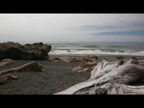 The Wild Coast - Olympic National Park