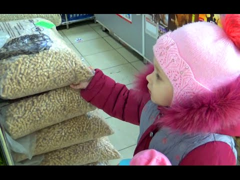 ВЛОГ Как Алиса ездит в магазин за покупками!!! VLOG Alice goes to the store