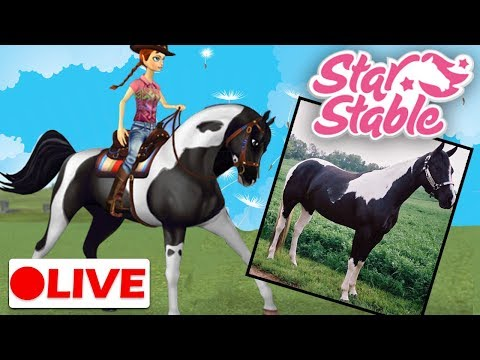 🔴 Star Stable Live Stream | Training My Pinto Arabian!