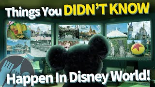 12 Things You Don't Know Happen in Disney World EVERY DAY!