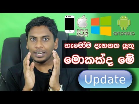 What is software update and upgrade and why should we do this explain in Sinhala