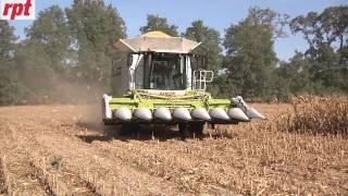 Zbiór kukurydzy z Claas Lexion 770 - więcej w miesięczniku RPT 12/2016
