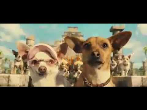 Chihuahua Song Beverly hils chiwawa