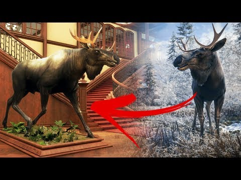 Hunter Buys Giant Mansion & Fills It With Dead Animals - Moose Hunting In Siberia - The Hunter COTW