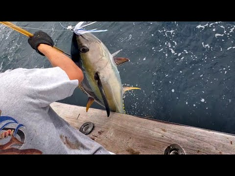 Outer Banks Epic Tuna Trip 2020 With Trophy Hunter Sportfishing