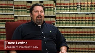 2011 President's Report: Dave Levine