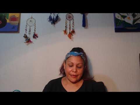 VIDEOVLOG.2