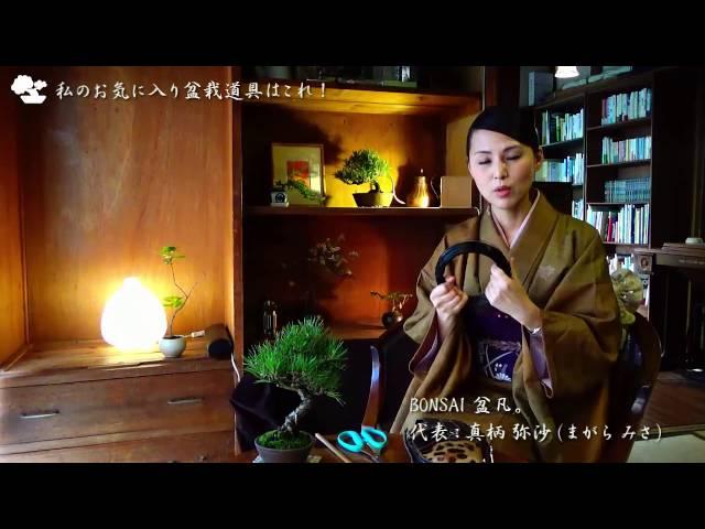 第12回「私のお気に入り盆栽道具はこれ!」盆栽家・ミサ先生インタビュー