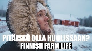 Kattotikkaiden asennusta | MAATILAVLOGI | FINNISH HOMESTEAD (English subtitles)