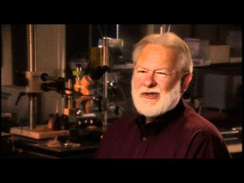 David Nichols: How do you prove the alien presences are real and not hallucinatory?