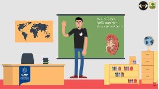 Dunia Sehat Batu Saluran Kemih | DAAI TV.