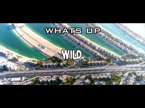 silento-wild(lyric-video-)-new-song