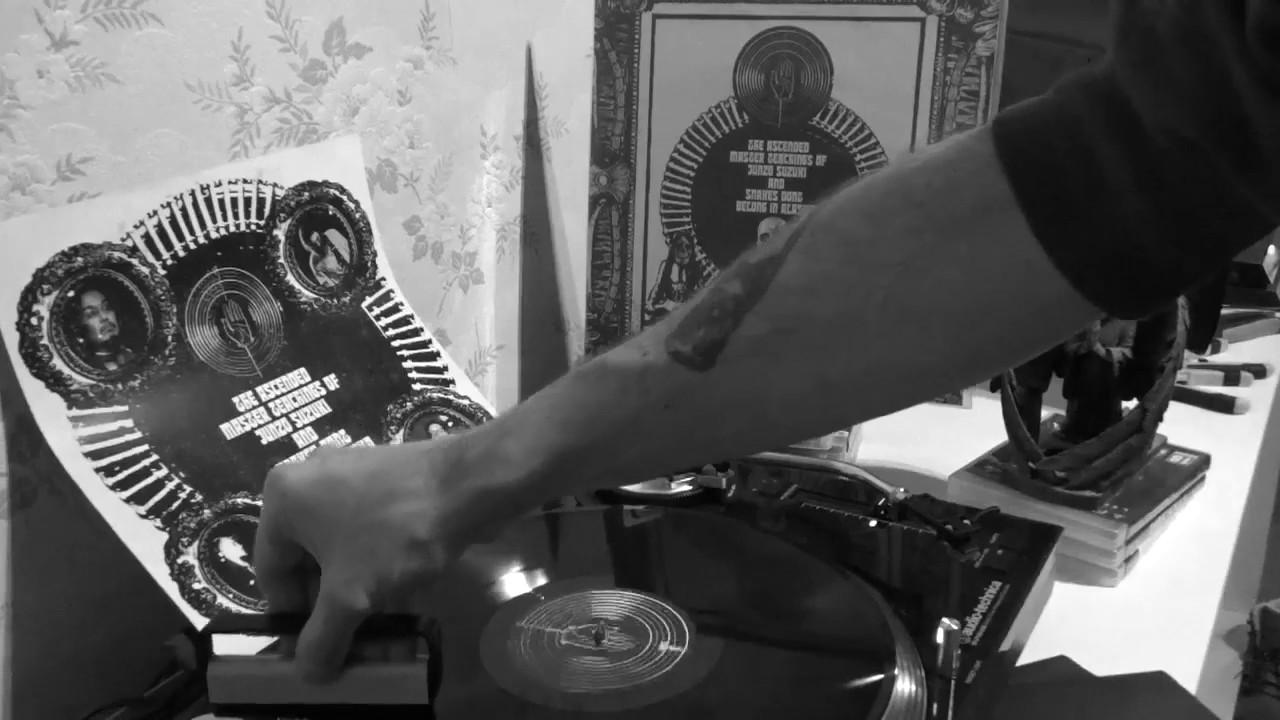 Vinyl Snakes 48 Count