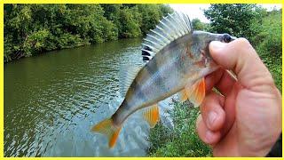 СПИННИНГ ОТКРЫТИЕ СЕЗОНА 2021 Рыбалка на отводной поводок