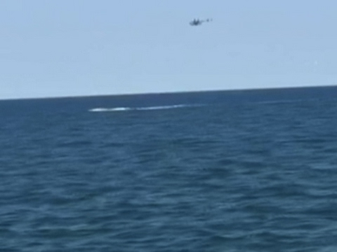 Pilot Rescued After Ditching Plane in Ocean