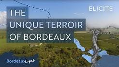 The Unique Terroir of The Bordeaux Wine Region