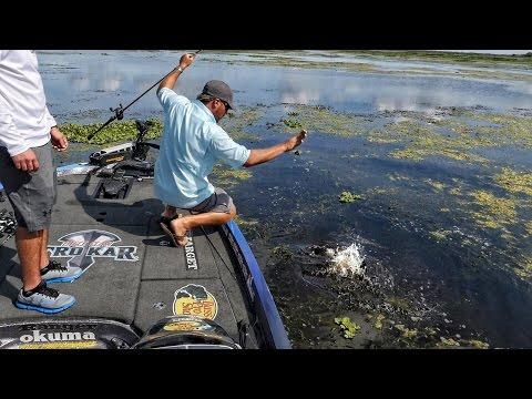 мартин матьяк рыбалка видео