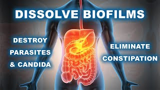 DISSOLVE BIOFILM MUCUS TO DESTROY PARASITES, CANDIDA AND ELIMINATE CONSTIPATION